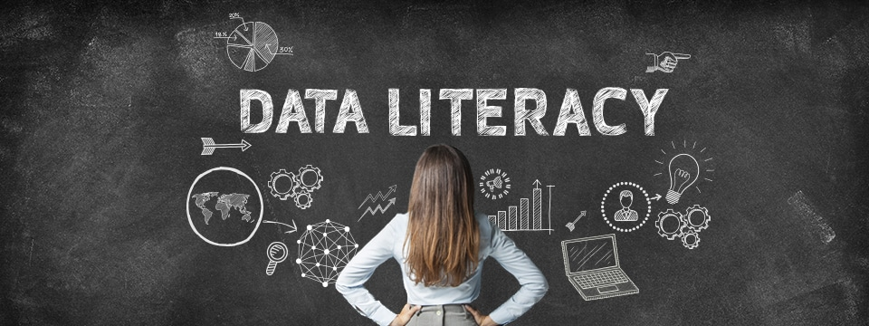data literacy, data,qlik,qlik sense, qlikview, data analyse,